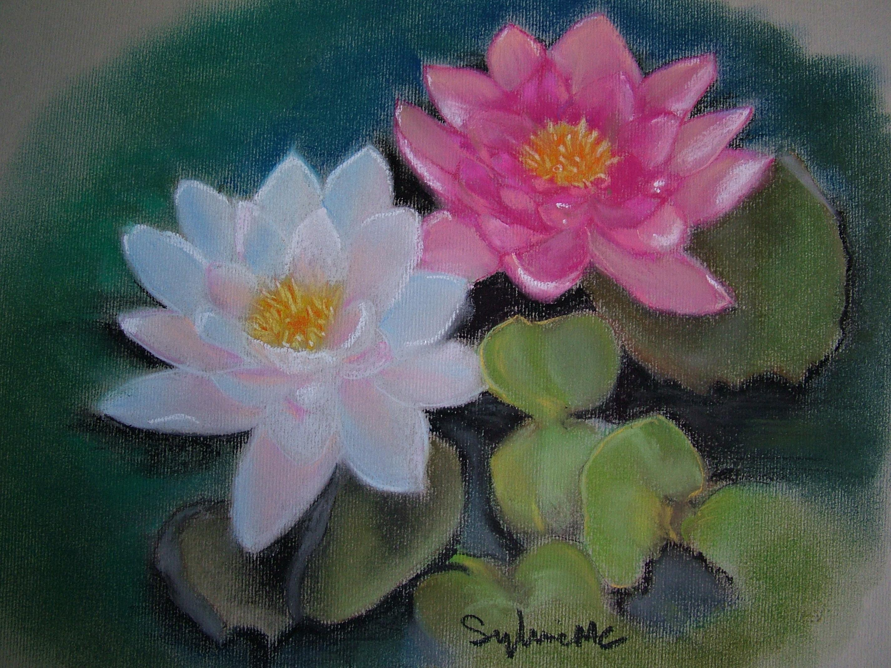 Sylviemc archive du blog - La fleur de lotus ...